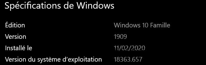 Version Windows.png